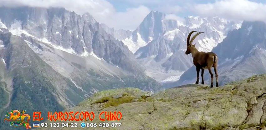 Cabra en el horóscopo chino