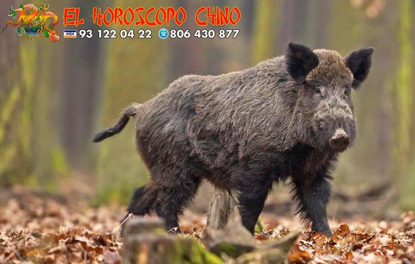 Cerdo en el horóscopo chino